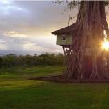 Zvonku vyzerá ako detský domček na strome, ale počkajte, až nazriete dnu!