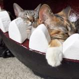 Pelech pre mačku inšpirovaný počítačovou hrou
