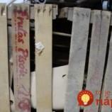 Muž premenil staré drevené bedničky na ozdobu svojej záhrady