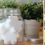 3 nápady na domáci osviežovač vzduchu, ktorý nestojí takmer nič!