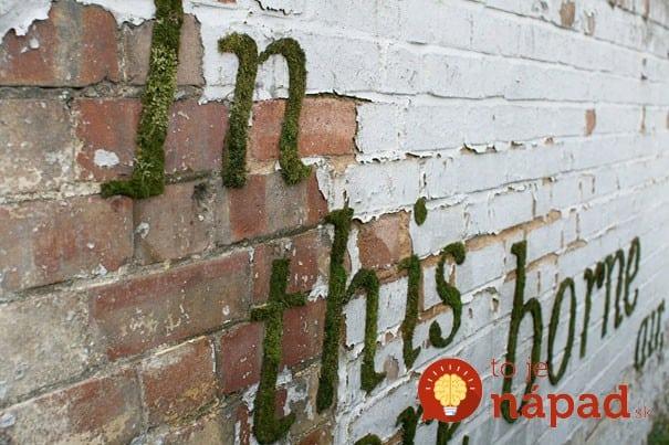 Moss Graffiti11