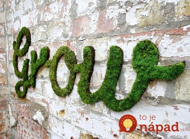 Moss Graffiti13