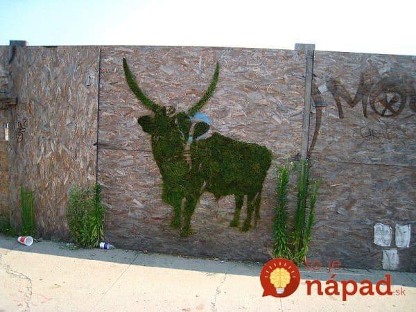 moss-animal