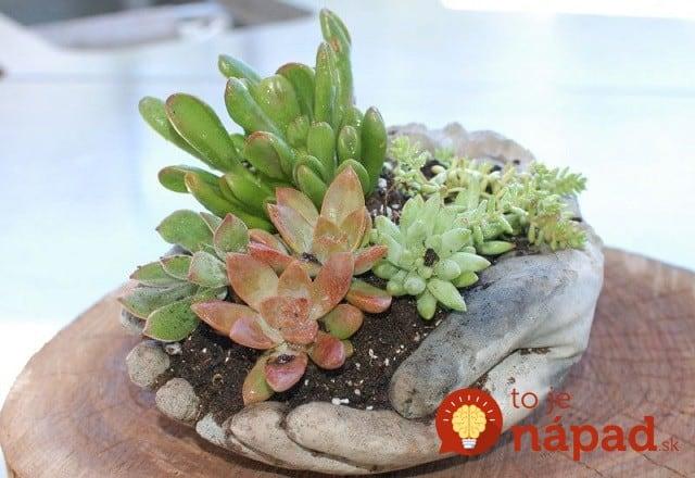 Hand-Planters-2