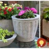 Kvetináče do záhrady za pár centov. Vyrobte si koľko len chcete!