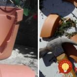 Namiesto toho, aby rozbitý kvetináč vyhodila, prišla s geniálnym nápadom. Inšpiruje aj vás!
