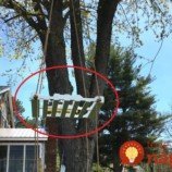 Drevenú paletu zavesili na strom. To, čo vytvorili, by chcel na záhrade každý!