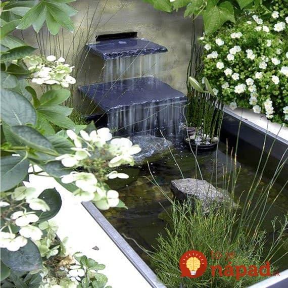 AD-Backyard-Ponds-Water-Gardens-6