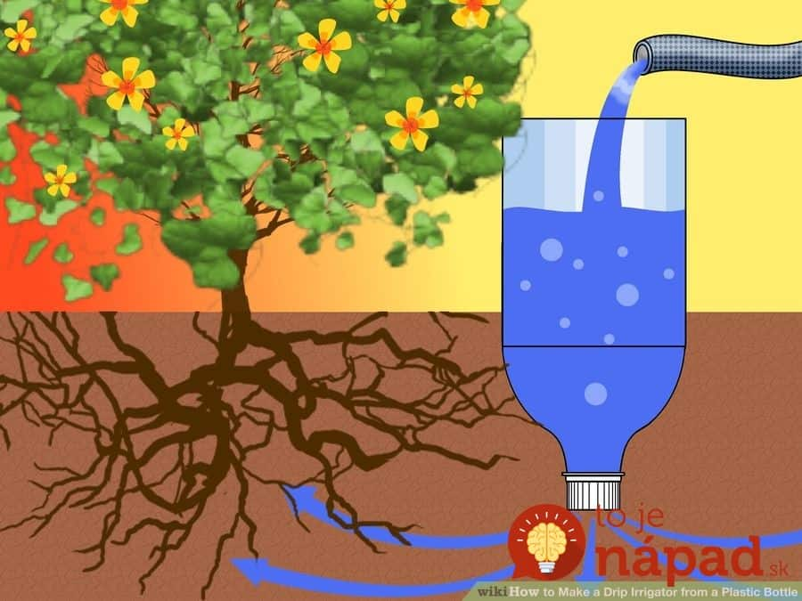 aid1570290-900px-Make-a-Drip-Irrigator-from-a-Plastic-Bottle-Step-4