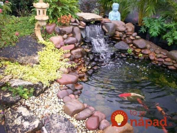 backyard-pond-water-garden-111-e1410180250904