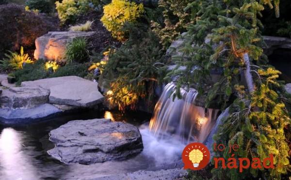 backyard-pond-water-garden-181