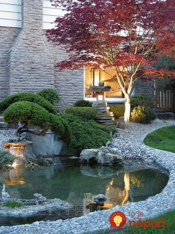 backyard-pond-water-garden-261