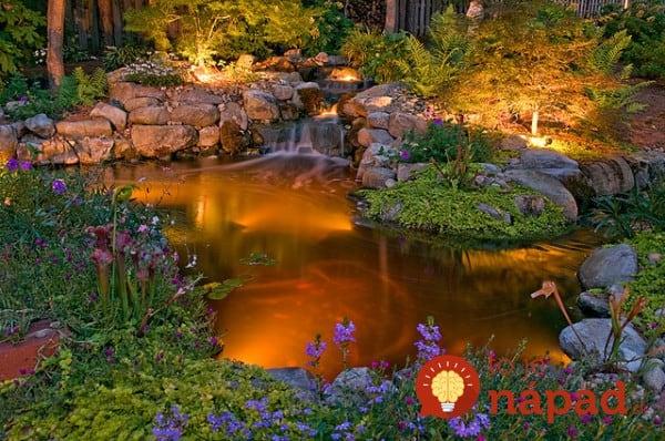 backyard-pond-water-garden-311-e1410180149803