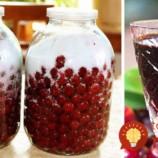 Domáci čerešňový likér z 3 prísad