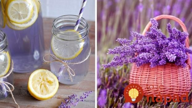 Zázračná levanduľa: Čo dokáže s našim zdravím a ako si z nej pripraviť letnú limonádu?