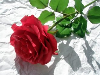 Myslíte si, že ide o ružu? Omyl, ukážeme vám, ako si túto nádheru môžete vyrobiť aj vy!