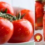 Bez nálevu: Najlepší spôsob, ako uchovať paradajky na celý rok!