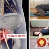 Zápal sedacieho nervu môžete poraziť aj doma! 8 jednoduchých cvikov, ktoré fungujú zázračne