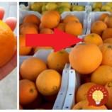 Profík ukázal jednoduchý trik, ako si v obchode zaručene vybrať pomaranč bez jadierok, šťavnatý a sladučký!