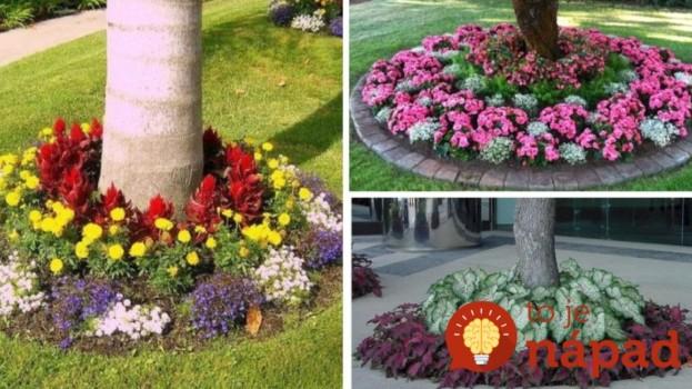 Máte v záhrade strom? Vysaďte okolo neho kvety, tento nápad celkom zmení vašu záhradu!