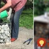 Muž priniesol do záhrady kus pletiva a kamene. Tento nápad vyzerá úžasne a v záhrade vydrží celé roky!