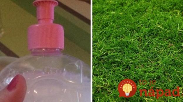 Zmiešal trochu saponátu s týmto nápojom a nalial na trávnik: Toto je jeho tajný trik, na pre najzelenší trávnik v okolí