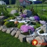 Bude nádherná takmer bez práce: Záhradný architekt poradí perfektné tipy pre najkrajšiu skalku v okolí!