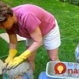 Žena si chcela založiť záhradnú skalku: Vzala staré lopty, obalila ich betónovou zmesou a takmer zadarmo si skrášlila celú záhradu!