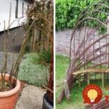 Prútie a popadané konáre nestojí nič: Títo ľudia ich zbierajú a menia na úžasné veci do svojich záhrad!