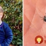 Chodia deti z vonku doštípané od komárov a obávate sa aj kliešťov? Mamička našla skvelý spôsob, ako deti ochrániť aj vtedy, keď si zabudnú dať repelent!