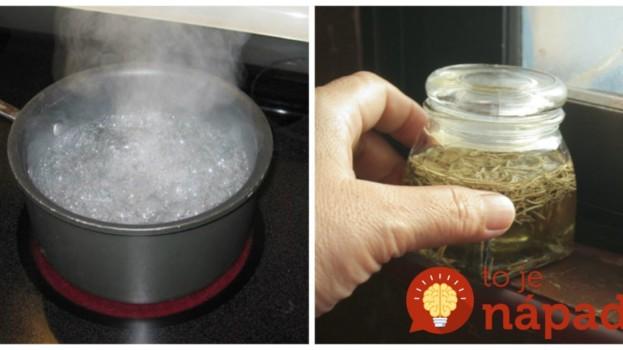 Sirupy proti kašľu už roky nekupujem: Za tento lacný recept dám ruku do ohňa, rýchlo pomôže, dlho vydrží a chutí aj deťom!