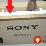 Žena vzala polystyrén zo škatule od televízora: Namiesto toho, aby ho vyhodila dostala perfektný nápad – toto by nám nenapadlo ani vo sne!