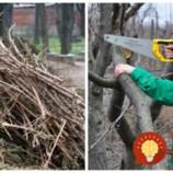 Na jar sa rozhodli vyčisť pozemok od starých konárov: Najskôr ich chceli len tak spáliť, potom však prišli s geniálnym nápadom do záhrady!