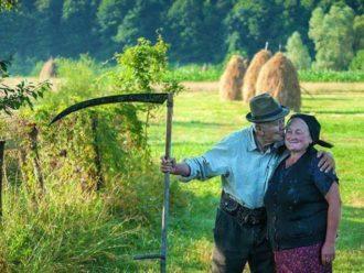 Keby ste sa opýtali prababičky, kedy-čo vysadiť, dala by vám túto geniálnu radu: Kto vie toto, ten bude žať bohatú úrodu!