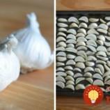 Potrebujete len 3 hlávky cesnaku: Šéfkuchár ukázal, ako si vyrobiť najlepšie cesnakové korenie do polievok, omáčok a na mäsko!