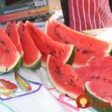 Toto by mal vedieť každý, kto miluje melón: Drobné jedierka určite nevyberajte – sú záchranou pre zrak, cievy a poznať by ich mali hlavne cukrovkári!