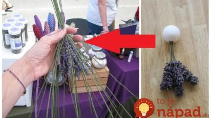 Nemusíte ju viazať len do kytičiek, toto je ešte lepšie: Úžasné nápady, ako zužitkovať voňavú úrodu levandule!
