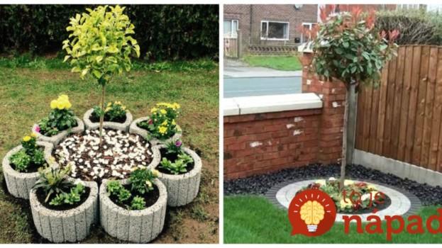 Máte na záhrade mladé stromčeky, ktoré ešte nestihli vyrásť? Úžasné nápady, ako zvýrazniť ich jemnú krásu!