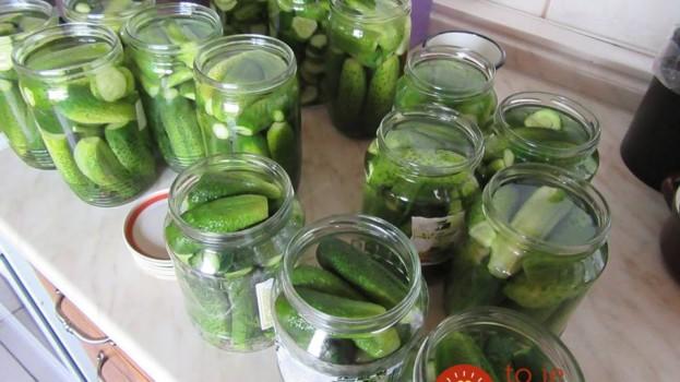 Zaváranie už neriešim a uhorky chutia fantasticky: Uhorky stačí len dať do pohárov a zaliať, už po pár dňoch môžete ochutnať!