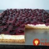 Nebo Pieklo: Úžasne šťavnatý koláčik s pudingom a kyslou smotanou, na druhý deň chutí ešte lepšie!
