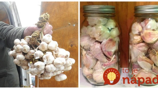11 domácich receptov z cesnaku, s ktorými dokázali naši predkovia vyhnať z domu každú chorobu: Neuveríte, na čo všetko funguje!