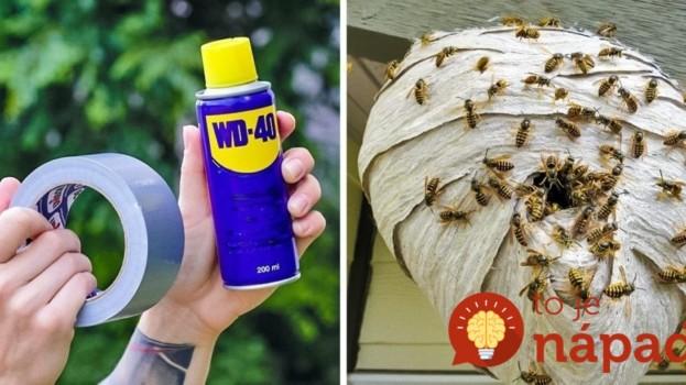 Kto pozná tieto triky, celé leto nerieši agresívne osy, špinavý gril ani muchy na čelnom skle: Ušetrí vám čas, peniaze aj námahu!