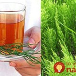 Čaj z prasličky vám po 40-tke zmení život: 21 liečivých účinkov, ktoré by mal poznať úplne každý!