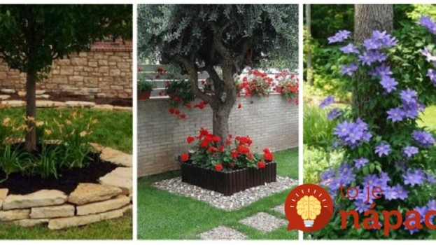 Vysaďte kvety okolo stromu, vyzerá to úžasne: 21 prekrásnych inšpirácií, ktoré celkom zmenia váš dvor!