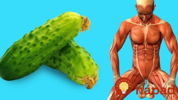 Toto sa stane s vaším telom, keď začnete jesť každý deň obyčajné uhorky: Začnite s tým už dnes +najlepšie recepty!