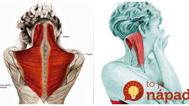 Cvičím len 2 týždne a chrbát mám ako za mlada: Česká trénerka ukázala najlepšie naťahovacie pohyby pre zdravú chrbticu!