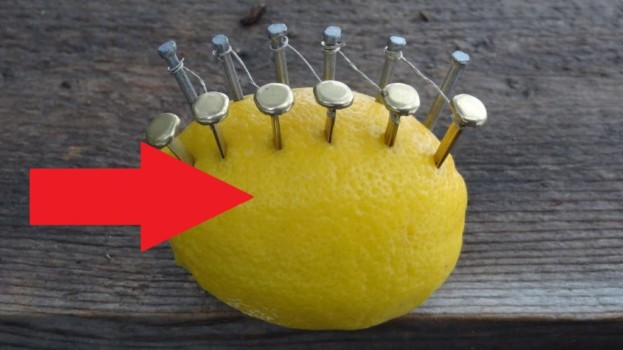 Citrón nedávajte len do čaju, toto je fantastické: Toto dokáže, ak doň zapichnete obyčajné klinčeky – funguje to!