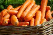 carrots-673184_1920-174x116.jpg
